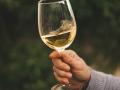Vins Bio, Biodynamiques, Naturels … Quelles différences ?